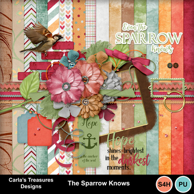 The-sparrow-knows-1