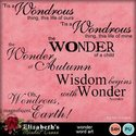 Wonderwordart-001_small