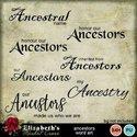 Ancestorswa-001_small