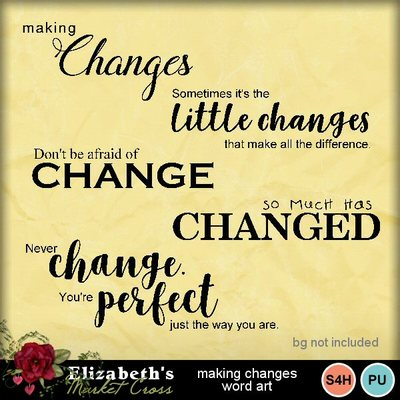 Makingchangeswa-001
