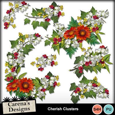 Cherish-clusters