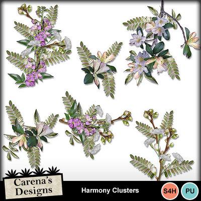 Harmony-clusters