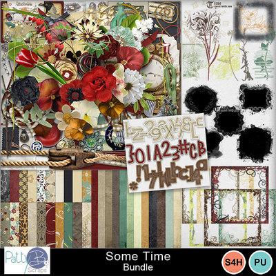 Pbs-some-time-bundle
