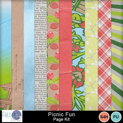 Pbs_picnic_fun_pkppr