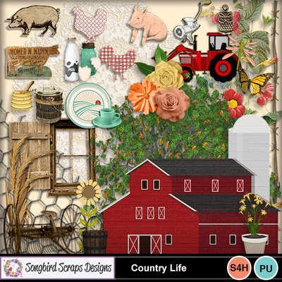Country_life_embellishments_1