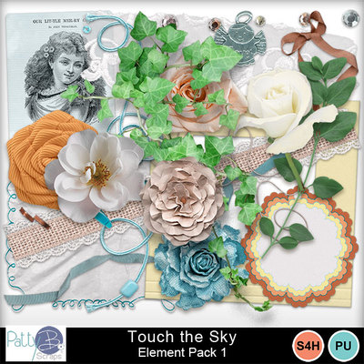 Pbs_touch_the_sky_ele1