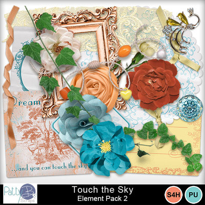 Pbs_touch_the_sky_ele2