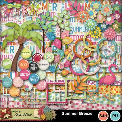 Summerbreeze3