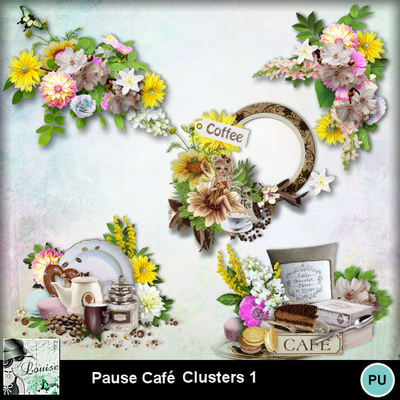 Louisel_pause_cafe_clusters1_preview