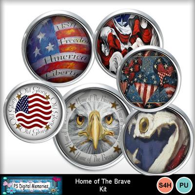 Homeof_the_brave3