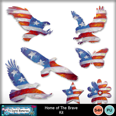 Home_of_the_brave_5