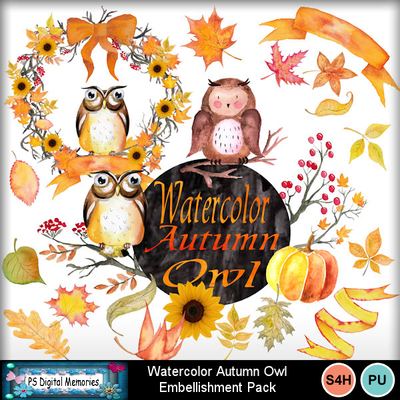 Watercolor_autumn_owl
