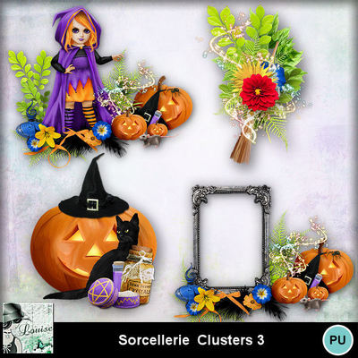 Louisel_sorcellerie_clusters3_preview