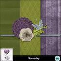 Scr-someday-rcprev_small