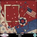 American-mini1-1_small