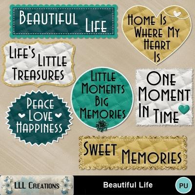 Beautiful_life-04
