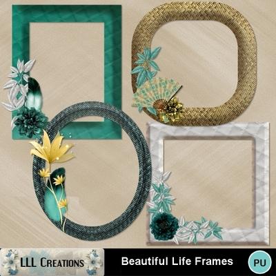 Beautiful_life_frames-01