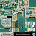Beautiful_life_bundle-01_small
