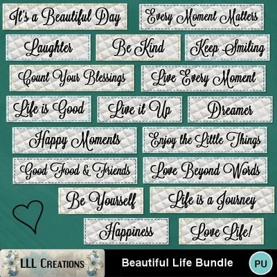 Beautiful_life_bundle-07