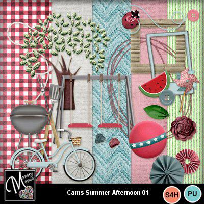 Cams01_copy