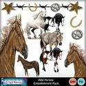 Wild_horses_small