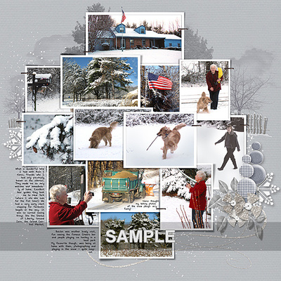 Sampleimage_5