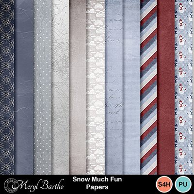 Snowmuchfun_papers