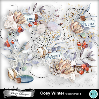 Pv_florju_cosywinter_cluster2