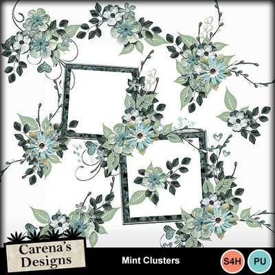 Mint-clusters