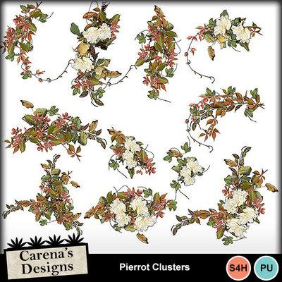 Pierrot-clusters