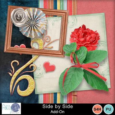 Pbs_side_by_side_add-on