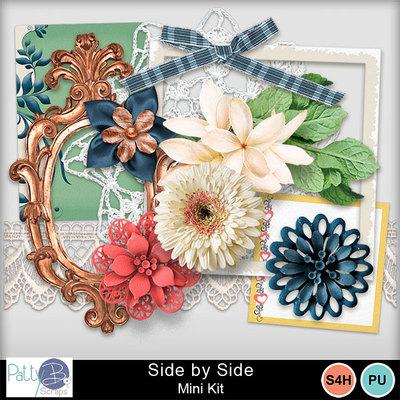 Pbs_side_by_side_mkele