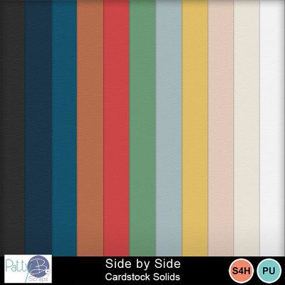 Pbs_side_by_side_cs