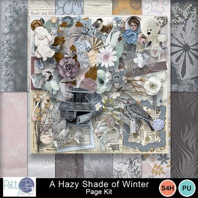Pbs_a_hazy_shade_of_winter_pkall