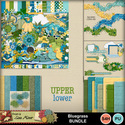 Bluegrassbundle_small