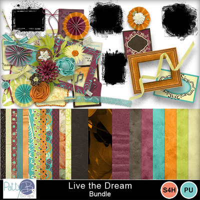 Pbs_live_the_dream_bundle