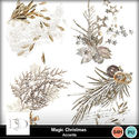 Dsd_magicchristmas_accents_small