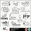 These_moments_word_art_small