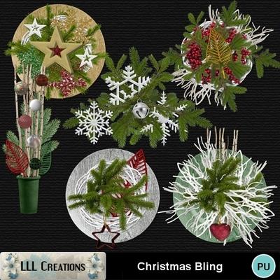 Christmas_bling-04