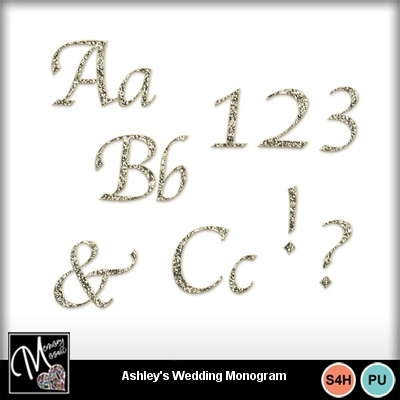 Ashleys_wedding_day_monogrampreview