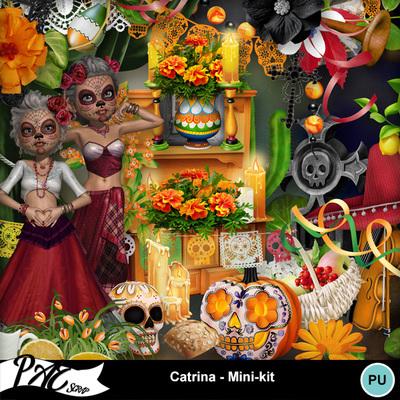 Patsscrap_catrina_pv_mini_kit