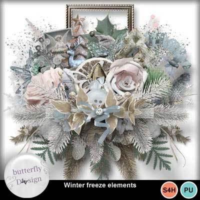 Bds_wintersfreeze_pv_el