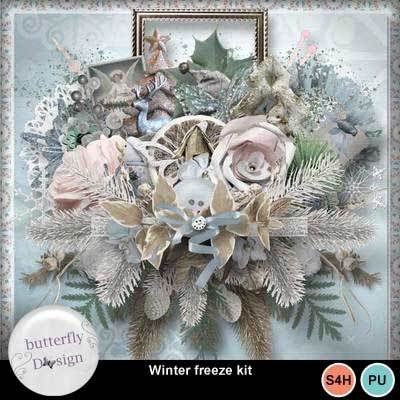 Bds_wintersfreeze_pv