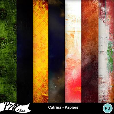 Patsscrap_catrina_pv_papiers