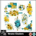 Verano_clusters_small