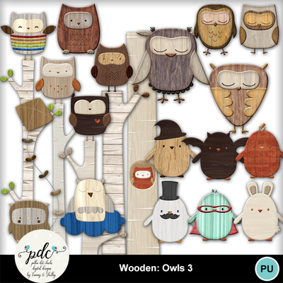 Pdc_mmnew600-wooden_owls_3