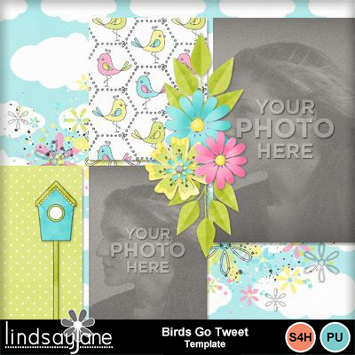 Birdsgotweet_template-001