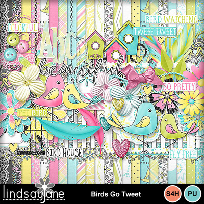Birdsgotweet_1