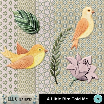A_little_bird_told_me-01