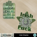 Irish_charms-01_small